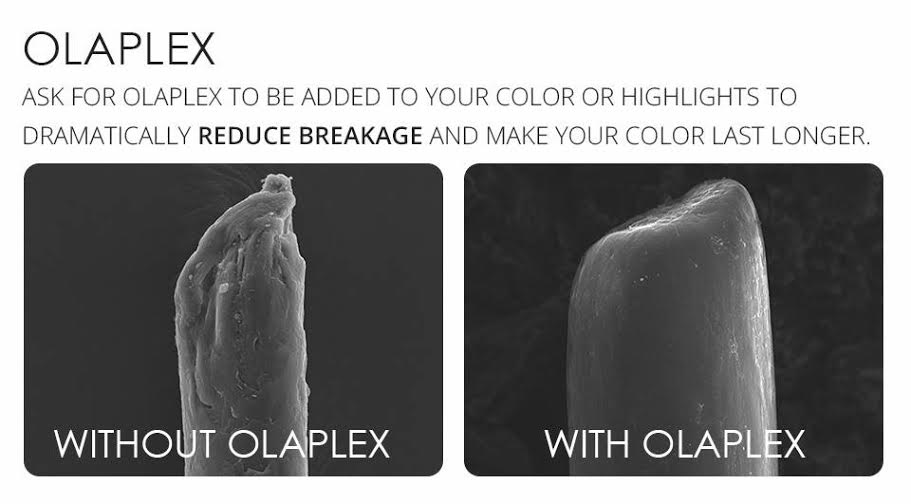 Olaplex: Why We Love the Science behind the Fad